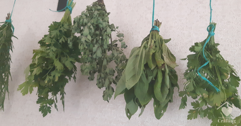 How to Dry Herbs the Old Fashioned Way