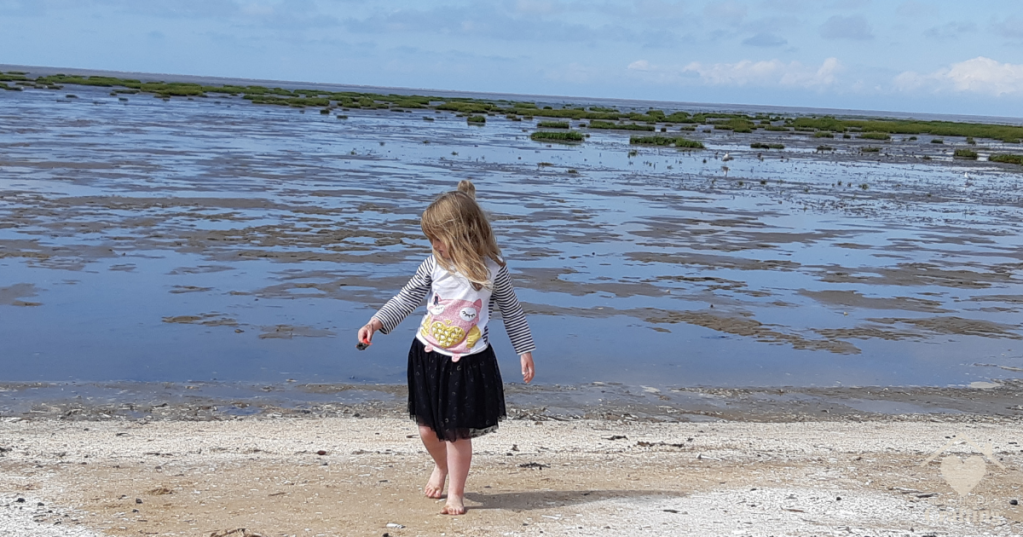 Trip to Southport Beach and Pier